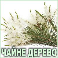 Ефірна олія чайного дерева Vivasan