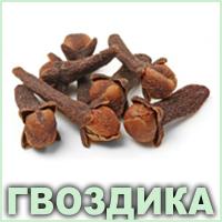 Ефірна олія гвоздики Vivasan