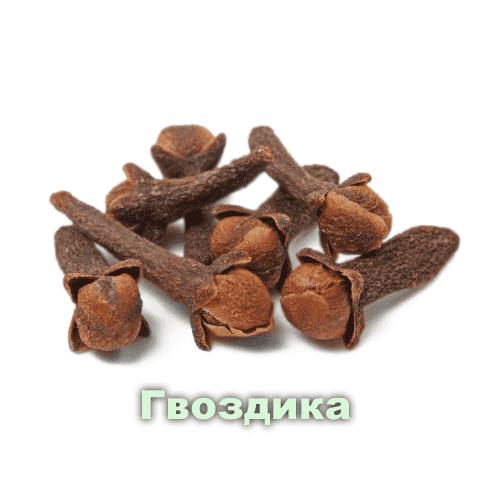 Гвоздика / Eugenia caryophyllata
