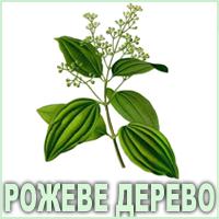 Ефірна олія рожевого дерева Vivasan