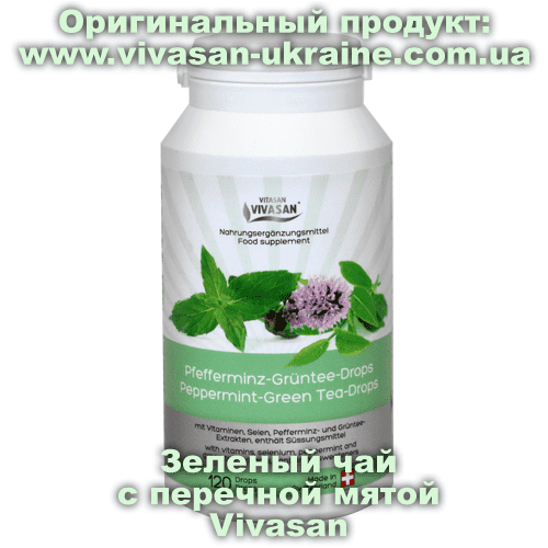 Зеленый чай с перечной мятой/Peppermint Green-Tea Vivasan