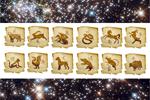 Эфирные масла и китайский гороскоп