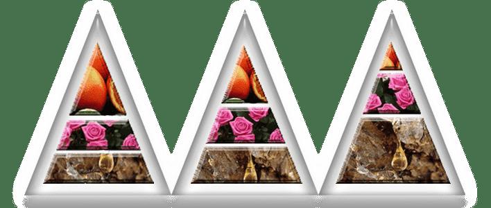 Гармония ароматов. Ольфакторная пирамида
