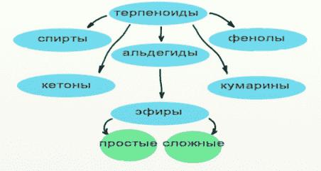Химия эфирных масел
