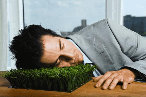Как правильно отдыхать на работе