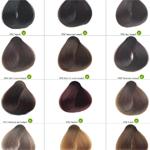 Оттенки растительной краски SanoTint