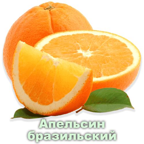 Апельсин бразильский / Citrus sinensis L.