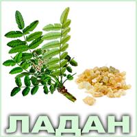 Эфирное масло ладана индийского Vivasan