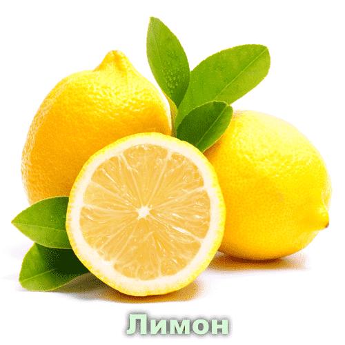 Лимон / Citrus Limon L.