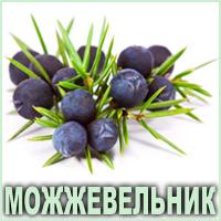 Эфирное масло можжевельника европейского Vivasan