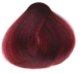 Краска SanoTint №22 Лесная ягода