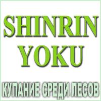Композиция 100% эфирных масел Купание среди лесов (Shinrin Yoku)