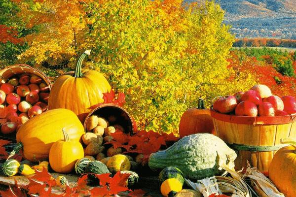 Витамины осенью: что выбрать?