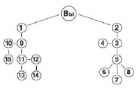 Эффективная структура Vivasan
